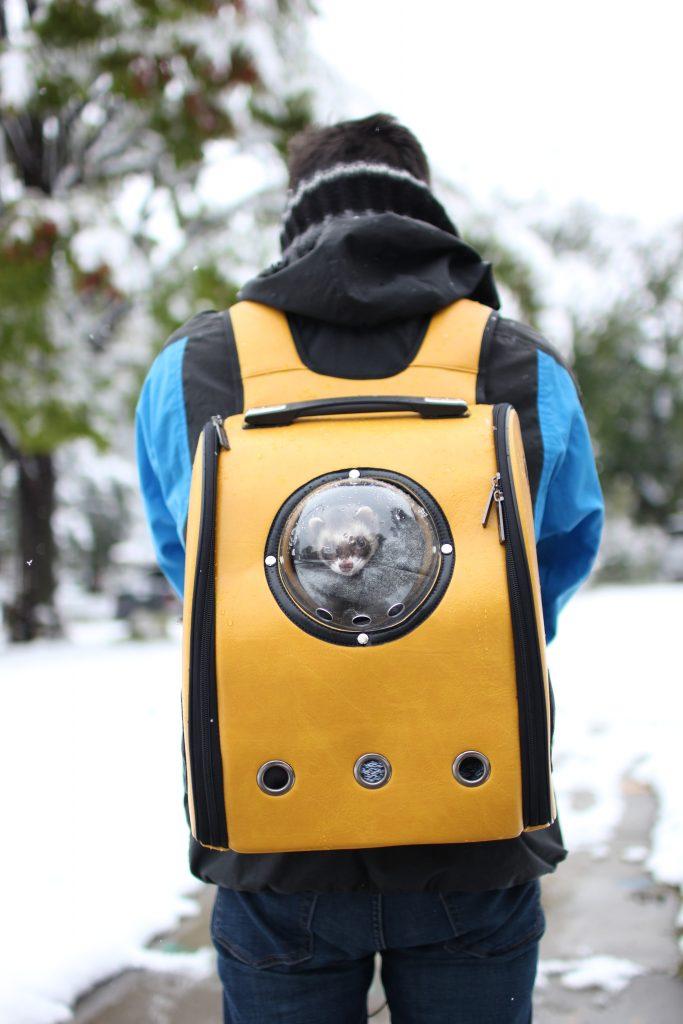 yellow ferret backpack