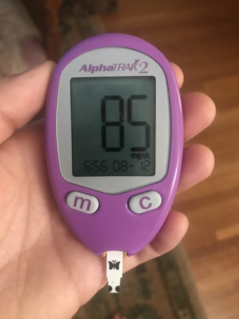 blood glucose monitor for ferrets