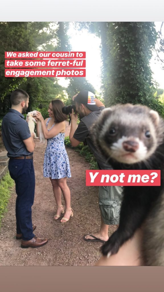 ferret behind the scenes during ferret engagement photos