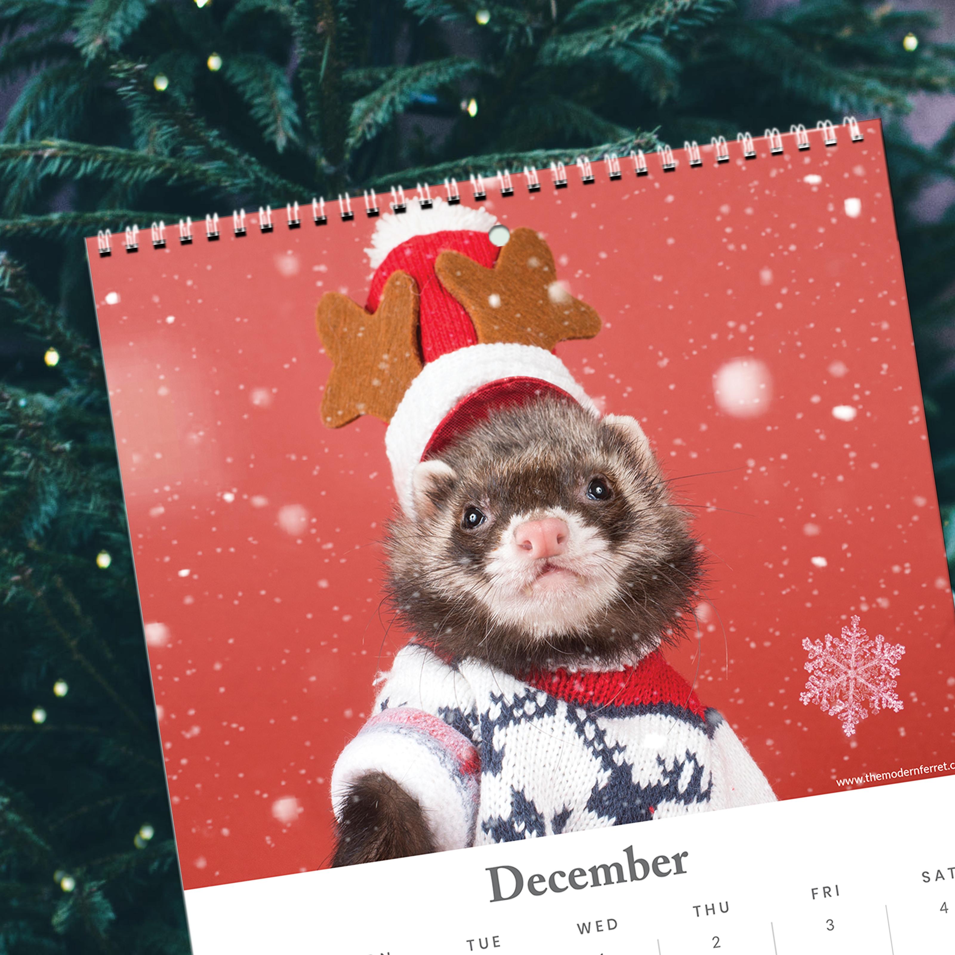 Ferret Calendar Christmas