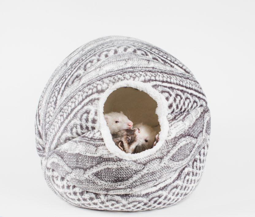 ferrets in sleep cocoon