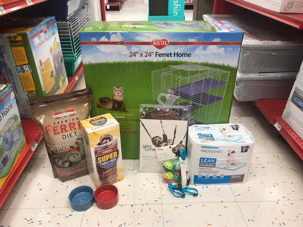 new ferret petco supplies