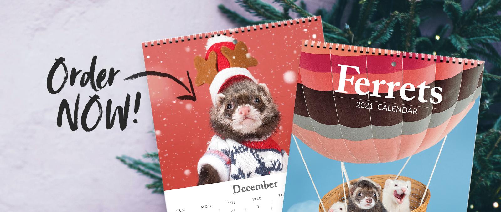 Ferret Calendar 2021