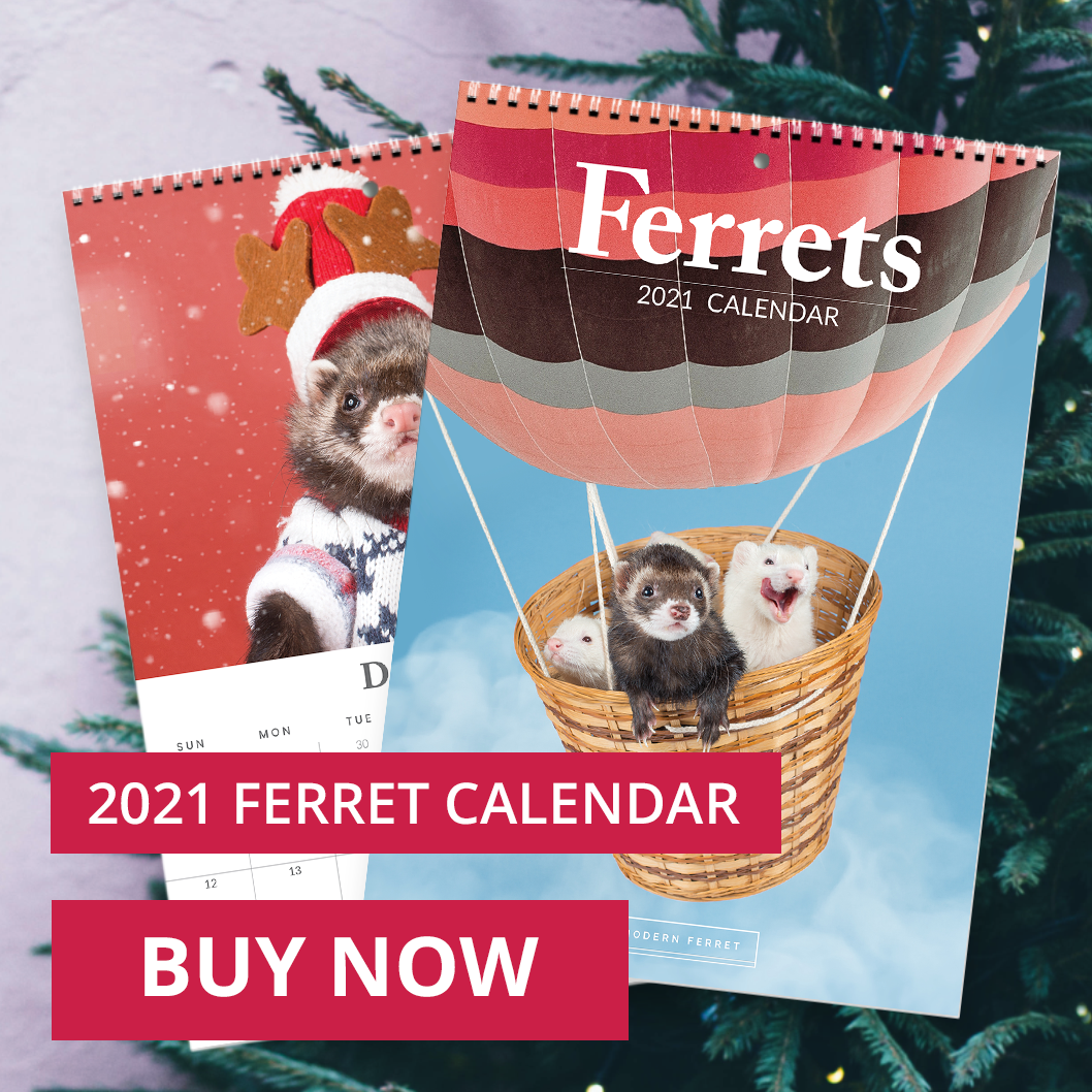 2021 Ferret Calendar